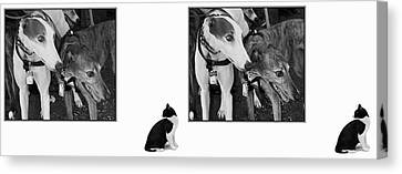 Sworn Enemies - Gently Cross Your Eyes And Focus On The Middle Image Canvas Print by Brian Wallace