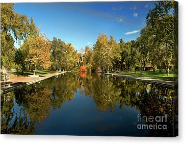 Sycamore Pool Canvas Print