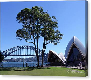 Sydney Harbour Contrasts Canvas Print by Phil Banks