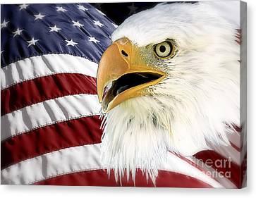 Symbol Of America Canvas Print