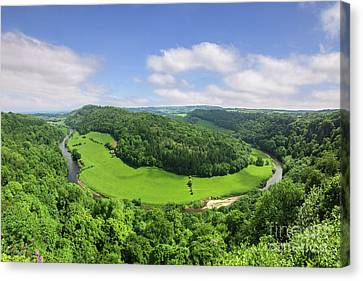 Symonds Yat, England Canvas Print