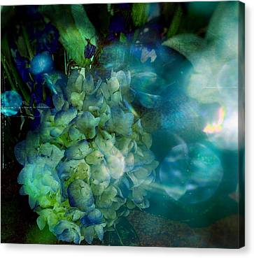 Symphony In Blue Canvas Print by Colleen Taylor