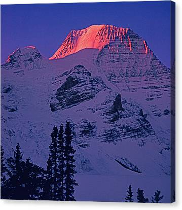 T-402403-b Winter Mt. Robson Sunrise Canvas Print by Ed Cooper Photography