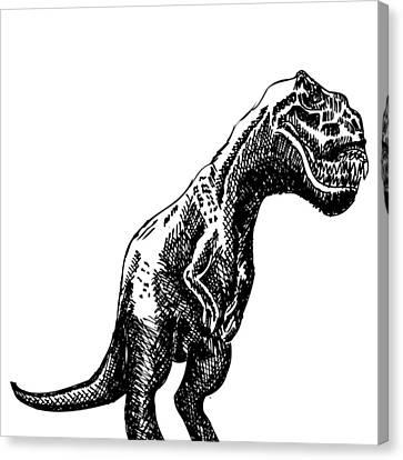 T-rex Dinosaur Canvas Print by Karl Addison