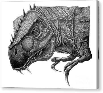 T-rex Canvas Print by Murphy Elliott