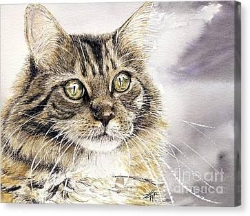 Tabby Cat Jellybean Canvas Print by Keran Sunaski Gilmore