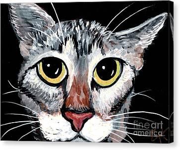 Tabby Eyes Canvas Print by Elaine Hodges