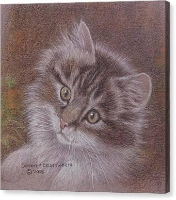 Tabby Kitten Canvas Print by Dorothy Coatsworth