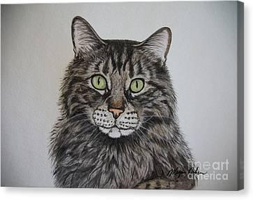 Tabby-lil' Bit Canvas Print by Megan Cohen