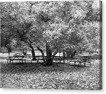 Tables And Tree Canvas Print by Christian Slanec
