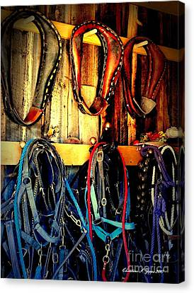 Tack Room Canvas Print by Christine Zipps