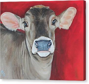 Taffy Canvas Print by Laura Carey