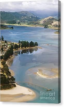 Tairua Harbour Canvas Print by Himani - Printscapes