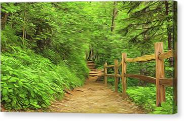 Take A Hike Canvas Print by Stephen Stookey