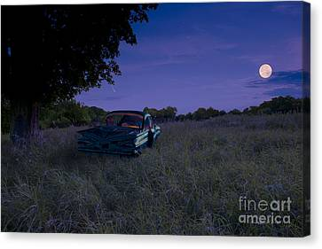 Take A Picture Of This... Canvas Print by Gordon Wood