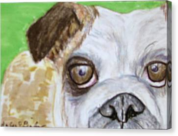Take Me Home - Bulldog Canvas Print by Barbara Giordano