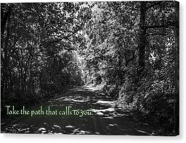 Take The Path That Calls To You Canvas Print by Eric Benjamin