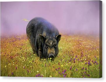 Take Time To Smell The Flowers Pot Bellied Pig Art Canvas Print by Jai Johnson