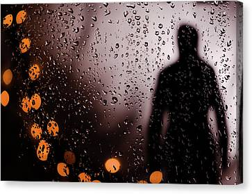 Take Your Light With You Canvas Print by David Sutton