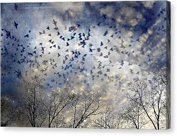 Canvas Print featuring the photograph Taken Flight by Jan Amiss Photography