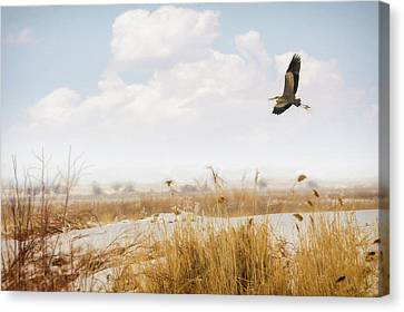 Takeoff Canvas Print by Priscilla Burgers