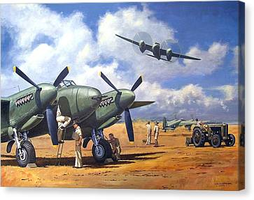 'taking Delivery - Mosquito' Canvas Print