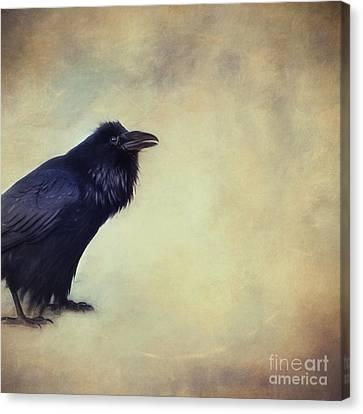 Talking Of Good Things Canvas Print by Priska Wettstein