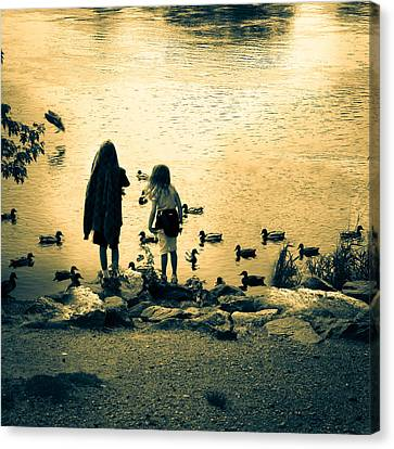 Talking To Ducks Canvas Print by Bob Orsillo