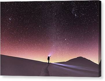 Talking To The Stars Canvas Print