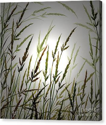 Canvas Print featuring the digital art Tall Grass And Sunlight by James Williamson