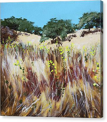 Tall Grass. Late Summer Canvas Print