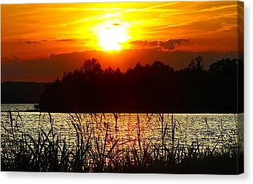 Tall Grass Sunset 2 Smith Mountain Lake Canvas Print by The American Shutterbug Society