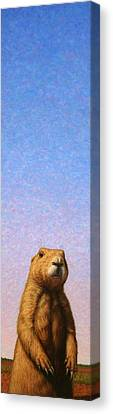 Tall Prairie Dog Canvas Print by James W Johnson