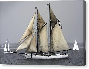Tall Ship Canvas Print by Dapixara Art