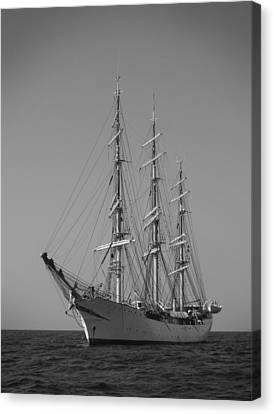 Tall Ship Denmark  Canvas Print