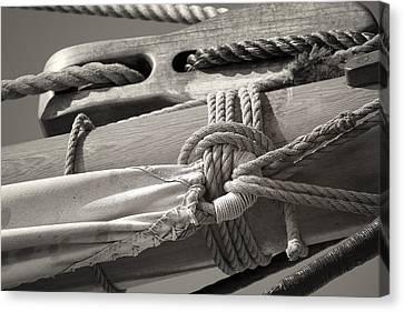 Tall Ship Canvas Print - Tall Ship Sail Cloth Sepia by Dapixara Art
