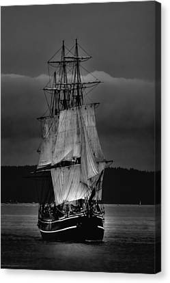 Tall Ships Hms Bounty 2 Canvas Print by David Patterson