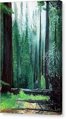 Tall Trees Canvas Print by Julie Lamons