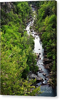 Tallulah Gorge-65 Canvas Print
