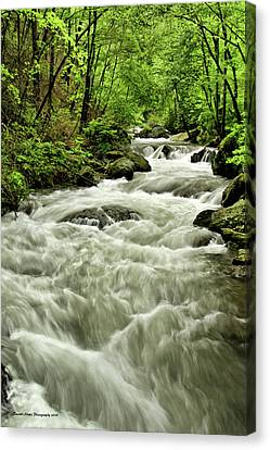 Tallulah River Rush Canvas Print