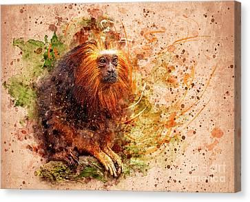 Tamarin Lion Monkey Canvas Print