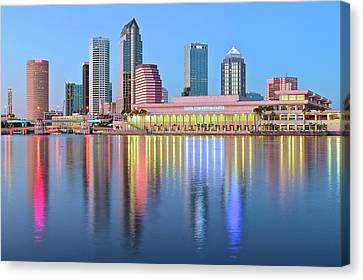 Devil Ray Canvas Print - Tampa Bay Aglow 2016 by Frozen in Time Fine Art Photography