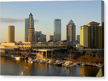 Tampa Bay And Gasparilla Canvas Print by David Lee Thompson
