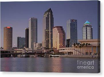 Tampa Florida  Canvas Print by David Lee Thompson