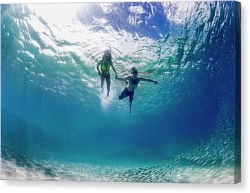 Tandem Swim Canvas Print by Sean Davey
