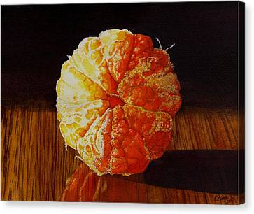 Tangerine Canvas Print by Catherine G McElroy