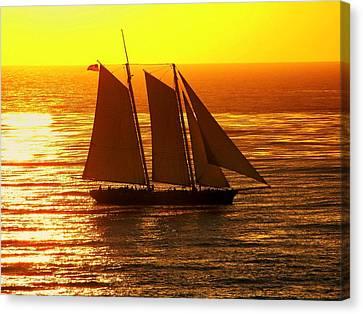 Tangerine Sails Canvas Print by Karen Wiles