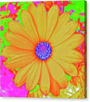 Tangerine Sunshine Canvas Print by Ann Johndro-Collins
