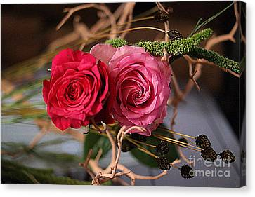 Canvas Print featuring the photograph Tangled On Driftwood by Diana Mary Sharpton