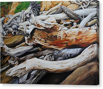 Tangled Timbers Canvas Print